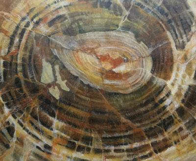 bois faucilisé de madagascar - 2-mini